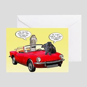 Bunny 16th Birthday Greeting Card