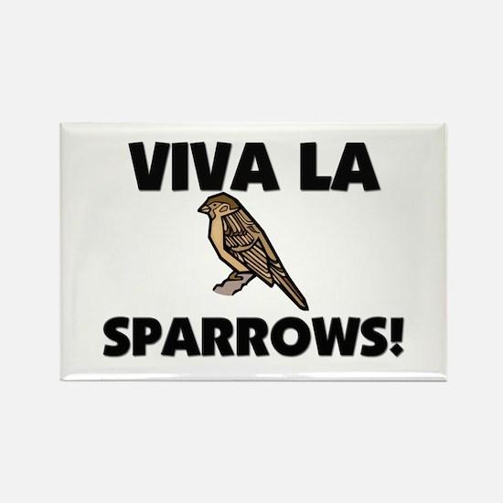 Viva La Sparrows Rectangle Magnet