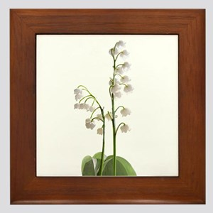 lily of Valley Framed Tile