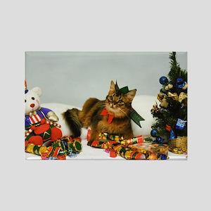 Somali cat Xmas Magnet