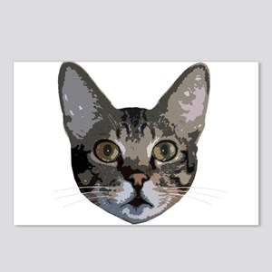 Grey Cat Face Postcards (Package of 8)