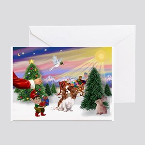 Treat/Cavalier (BL) Greeting Cards (Pk of 10)