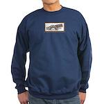 Steel Belted Radio Sweatshirt (dark)