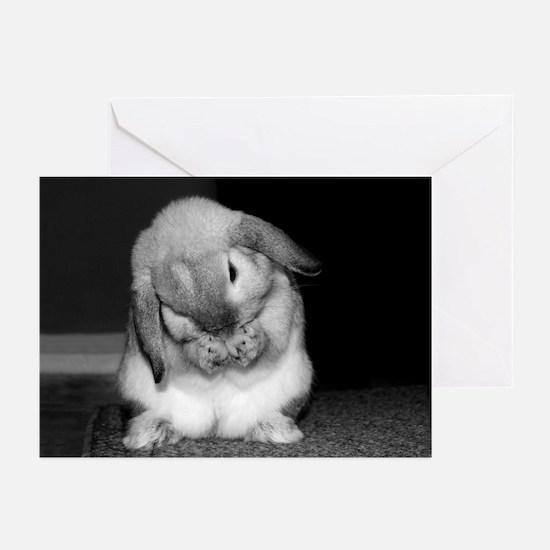 Bunny Praying Sympathy Cards (Pk of 10)