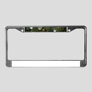 Oh Tannenbaum License Plate Frame