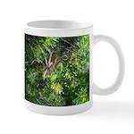 Funnel Web Spider Mug