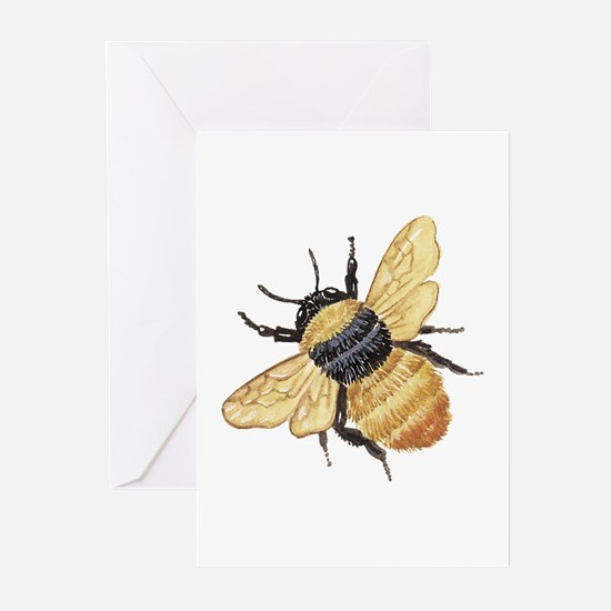 Bumble Bee Greeting Cards (Pk of 10)