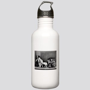 Dog Pulling Kittens In Stainless Water Bottle 1.0L