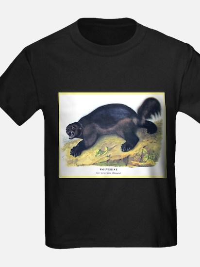 Audubon Wolverine Animal (Front) T