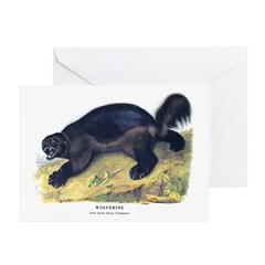 Audubon Wolverine Animal Greeting Cards (Pk of 20)