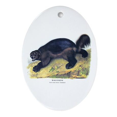 Audubon Wolverine Animal Oval Ornament