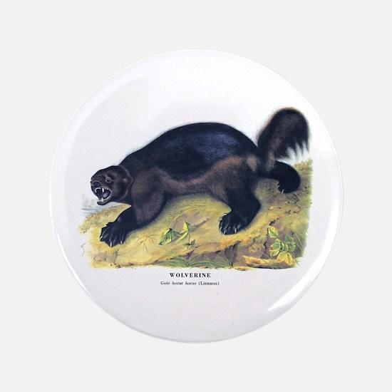 "Audubon Wolverine Animal 3.5"" Button"