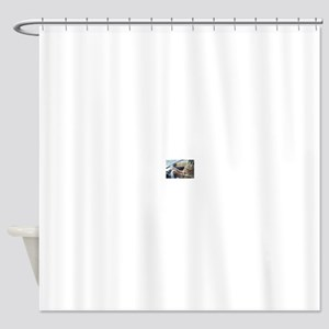 Driving Cat Shower Curtain