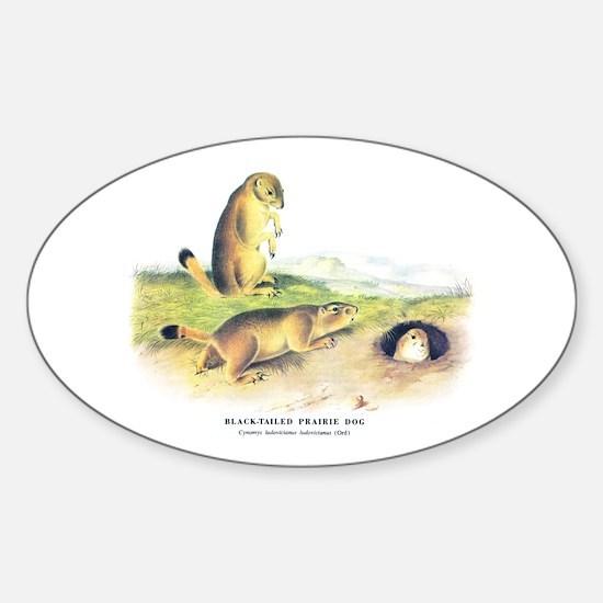 Audubon Prairie Dog Animal Oval Decal