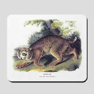 Audubon Bobcat Animal Mousepad