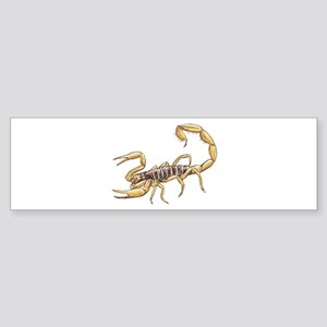 Scorpion Bumper Sticker