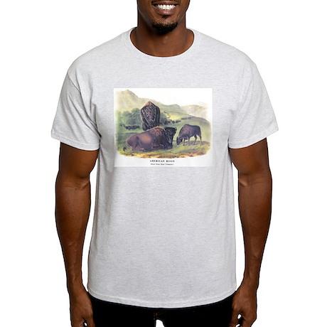 Audubon American Bison Buffalo (Front) Light T-Shi