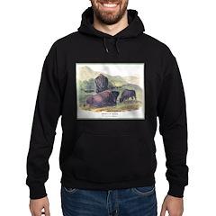 Audubon American Bison Buffalo (Front) Hoodie