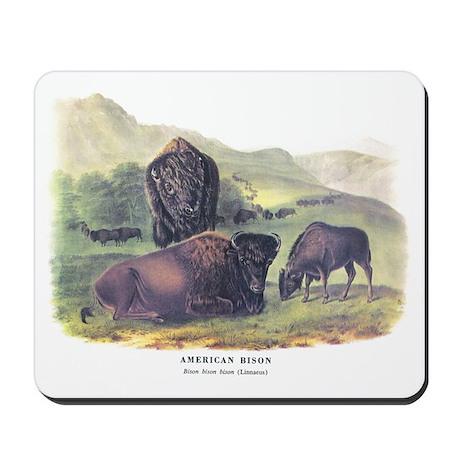 Audubon American Bison Buffalo Mousepad