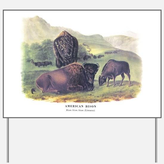 Audubon American Bison Buffalo Yard Sign