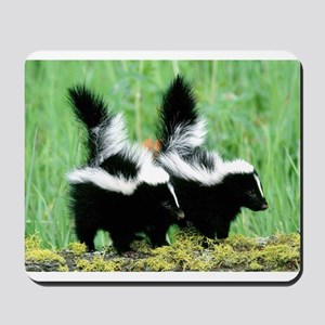 Two Skunks Mousepad