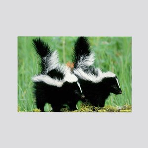 Two Skunks Rectangle Magnet