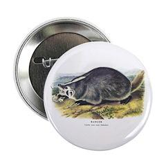 Audubon Badger Animal 2.25