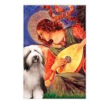 Mandolin / Beardie #1 Postcards (Package of 8)
