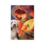 Mandolin / Beardie #1 Rectangle Magnet (10 pack)