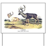 Audubon Caribou Reindeer Animal Yard Sign