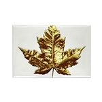 Gold Canada Rectangle Magnet 100 pack Maple Leaf