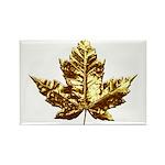 Canada Fridge Magnets 10 pack Gold Maple Leaf Art