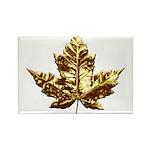 Canada Fridge Magnet Chrome Gold Maple Leaf