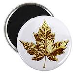 Metal Canada Fridge Magnet Gold Chrome Leaf Magnet