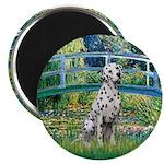 Bridge / Dalmatian #1 Magnet