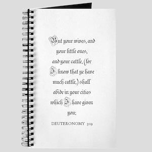 DEUTERONOMY 3:19 Journal