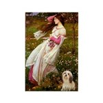 Windflowers / Lhasa Apso #4 Rectangle Magnet