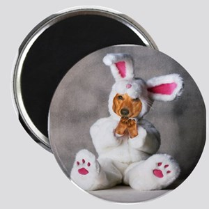 Easter Bunny Red Magnet