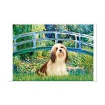 Bridge / Lhasa Apso #4 Mini Poster Print