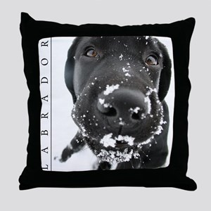 Black Lab Throw Pillow - Wintry Scene w/ Labrador