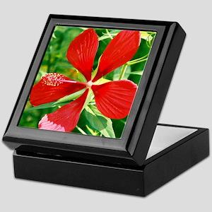 Star Of Texas Hibiscus - Keepsake Box