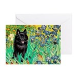 Irises / Schipperke #2 Greeting Cards (Pk of 10)