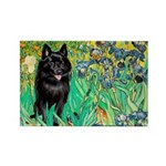 Irises / Schipperke #2 Rectangle Magnet