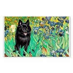 Irises / Schipperke #2 Sticker (Rectangle)