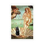 Venus / Schipperke #5 Sticker (Rectangle)
