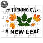 NEW LEAF Puzzle