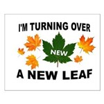 NEW LEAF Posters
