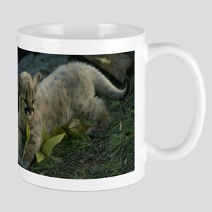 Mountain Lion Kitten Mug
