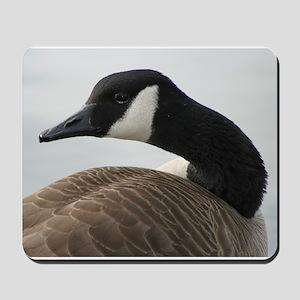 Canadian Goose Mousepad