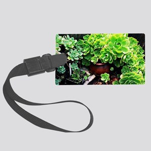 Spring succulents Large Luggage Tag